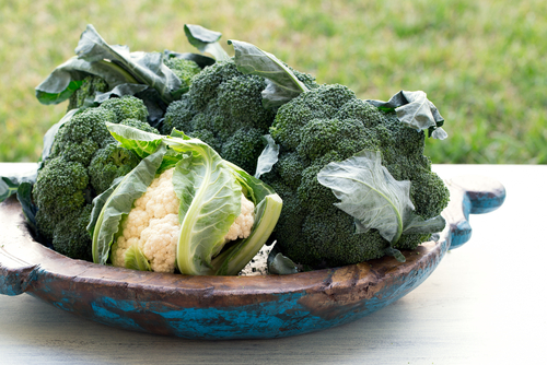 Broccoli and Nutrition