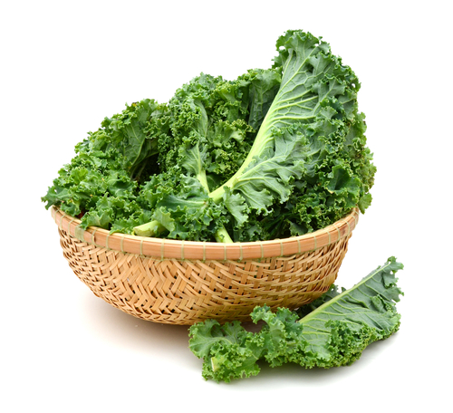 Kale and Nutrition
