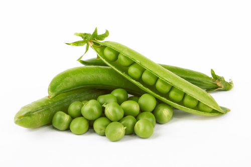 Peas and Nutrition