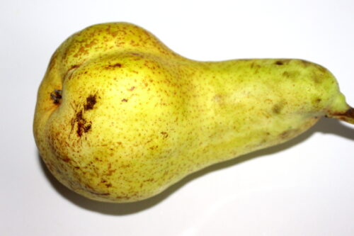 Pear and Nutrition